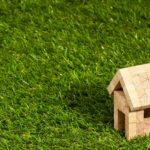 dachy zielone ekstensywne
